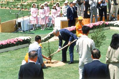 全国植樹祭の様子